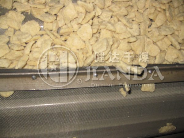 植物蛋白干燥生产线