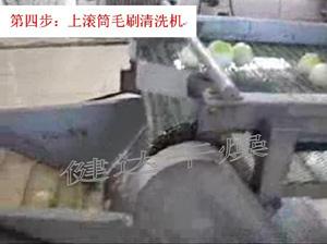 蔬菜脱水-上滚筒毛刷清洗机