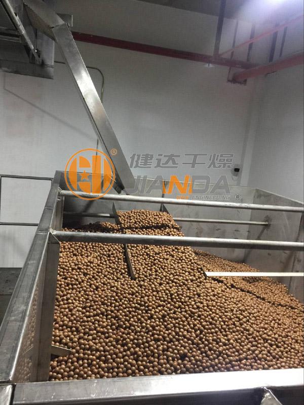 坚果干燥生产线上料